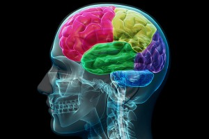 traumatic brain injury, tbi, Serious injury, wheelchair, catastrophic injury
